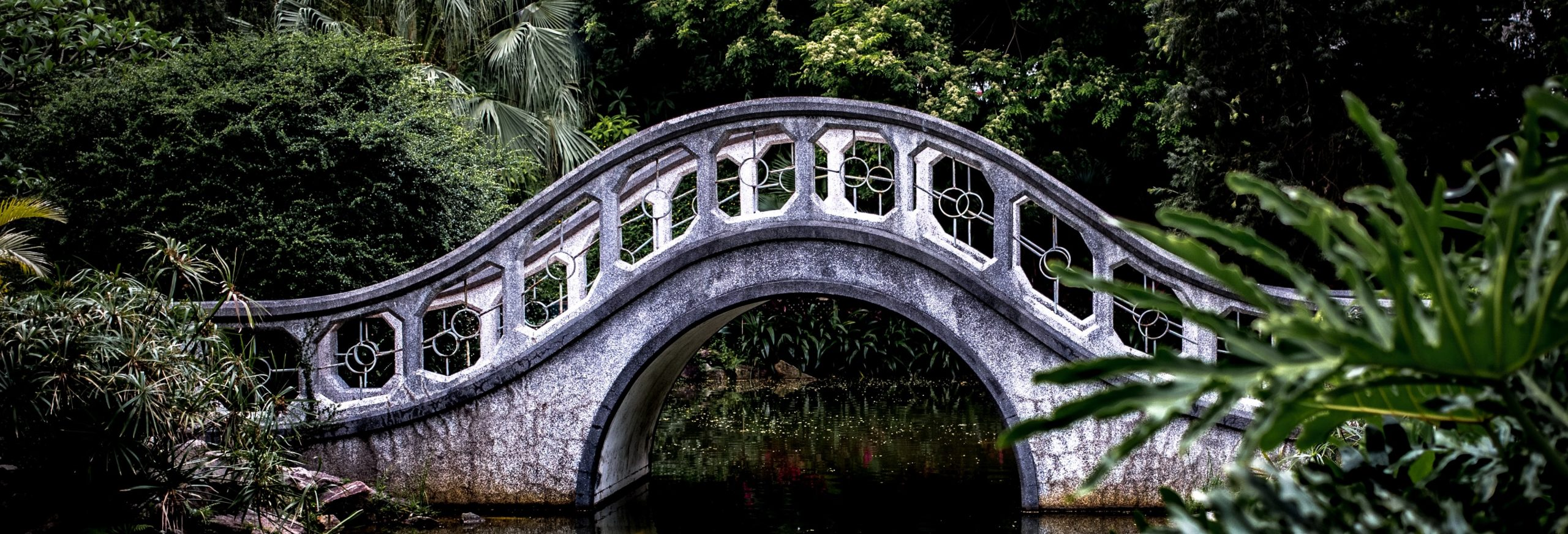white arch bridge surrounded by green trees and plants spanning still water